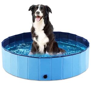 Swimming, Playing, and Grooming Pools for Dogs